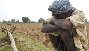 42,480 farmers and daily wagers committed suicide in 2019