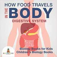digestive system book